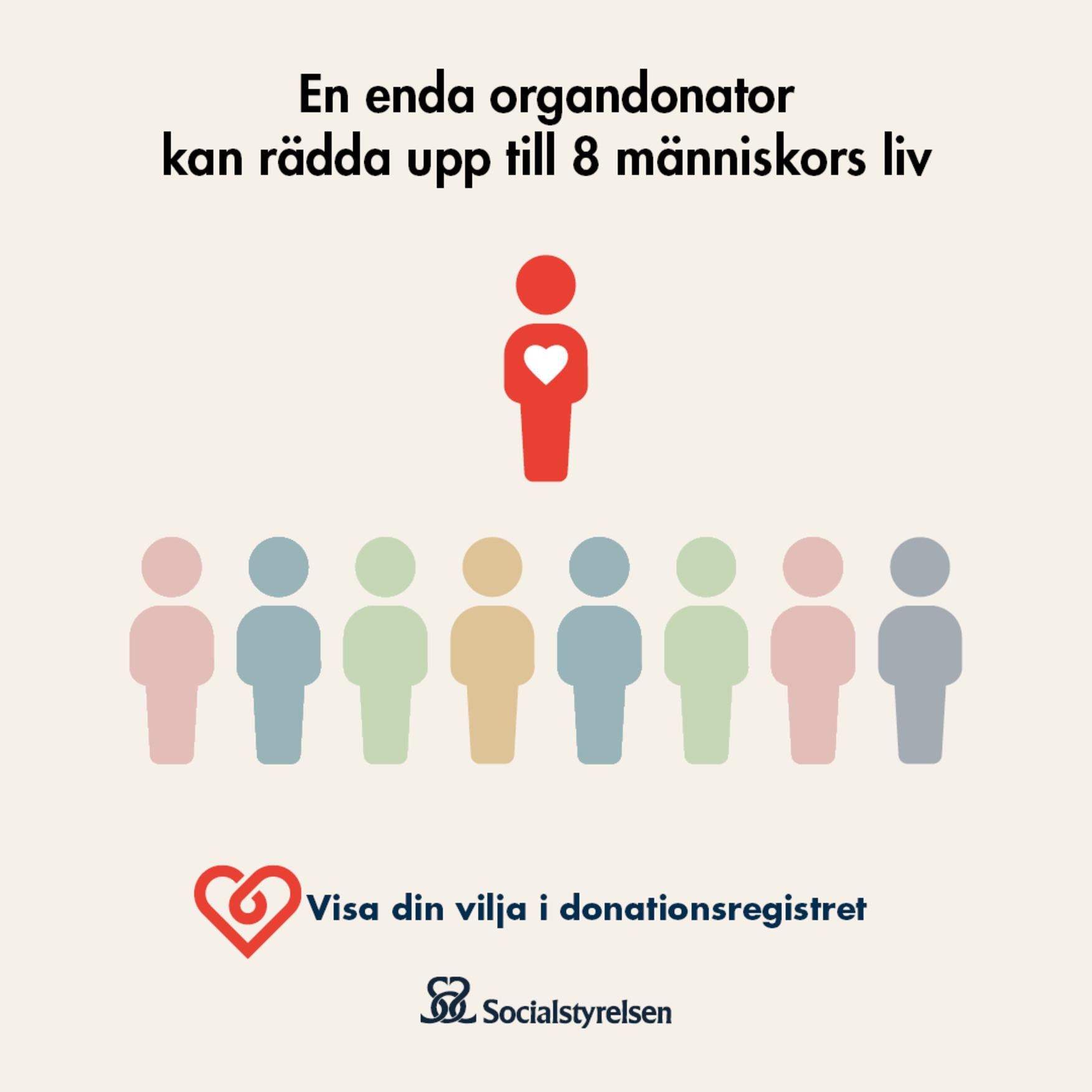 En grafisk person-ikon står framför åtta andra grafiska person-ikoner i olika färger. Nederst Socialstyrelsens logga. Text: En enda organdonator kan rädda upp till 8 människors liv. Visa din vilja i donationsregistret.